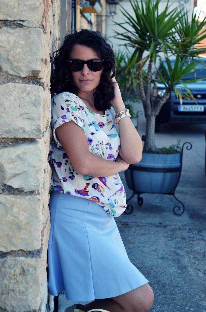 Mi vestido azul - Birds (17)