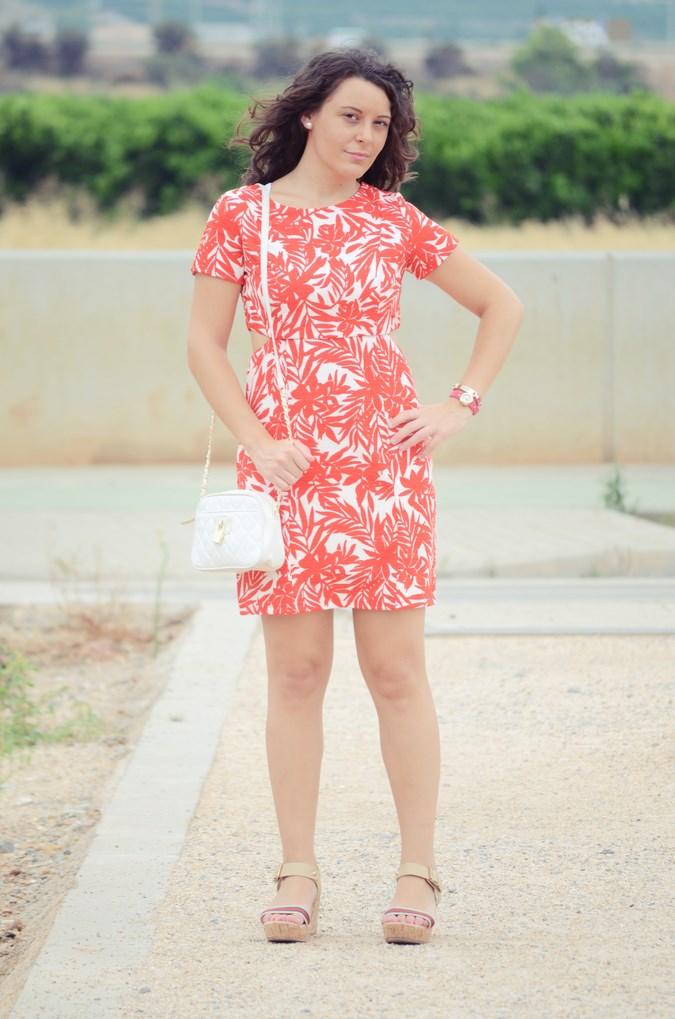 Mi vestido azul - Red Leaves (4)