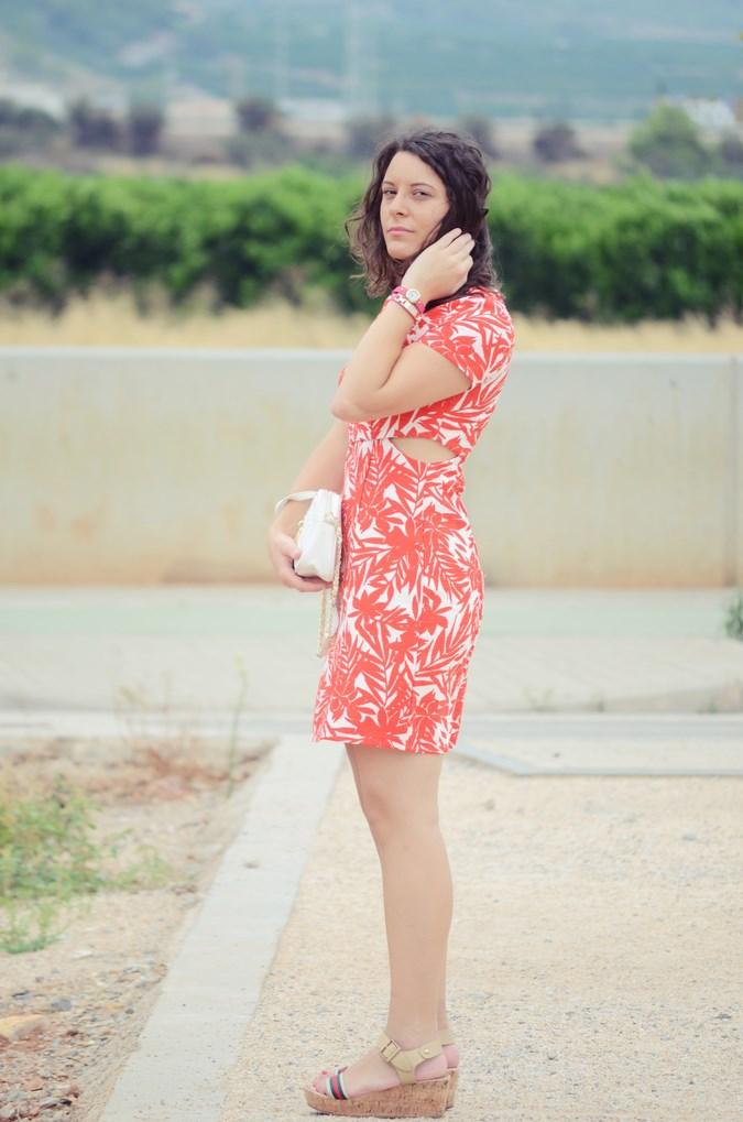 Mi vestido azul - Red Leaves (7)