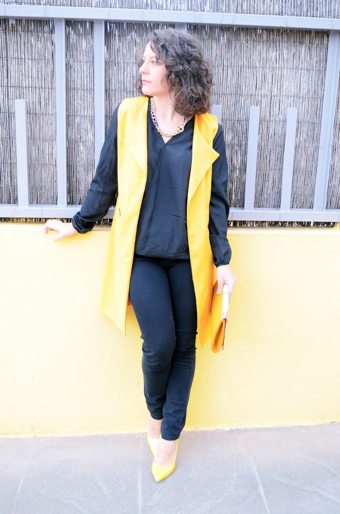Yellow vest (2)