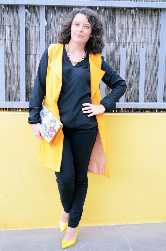 Yellow vest (5)