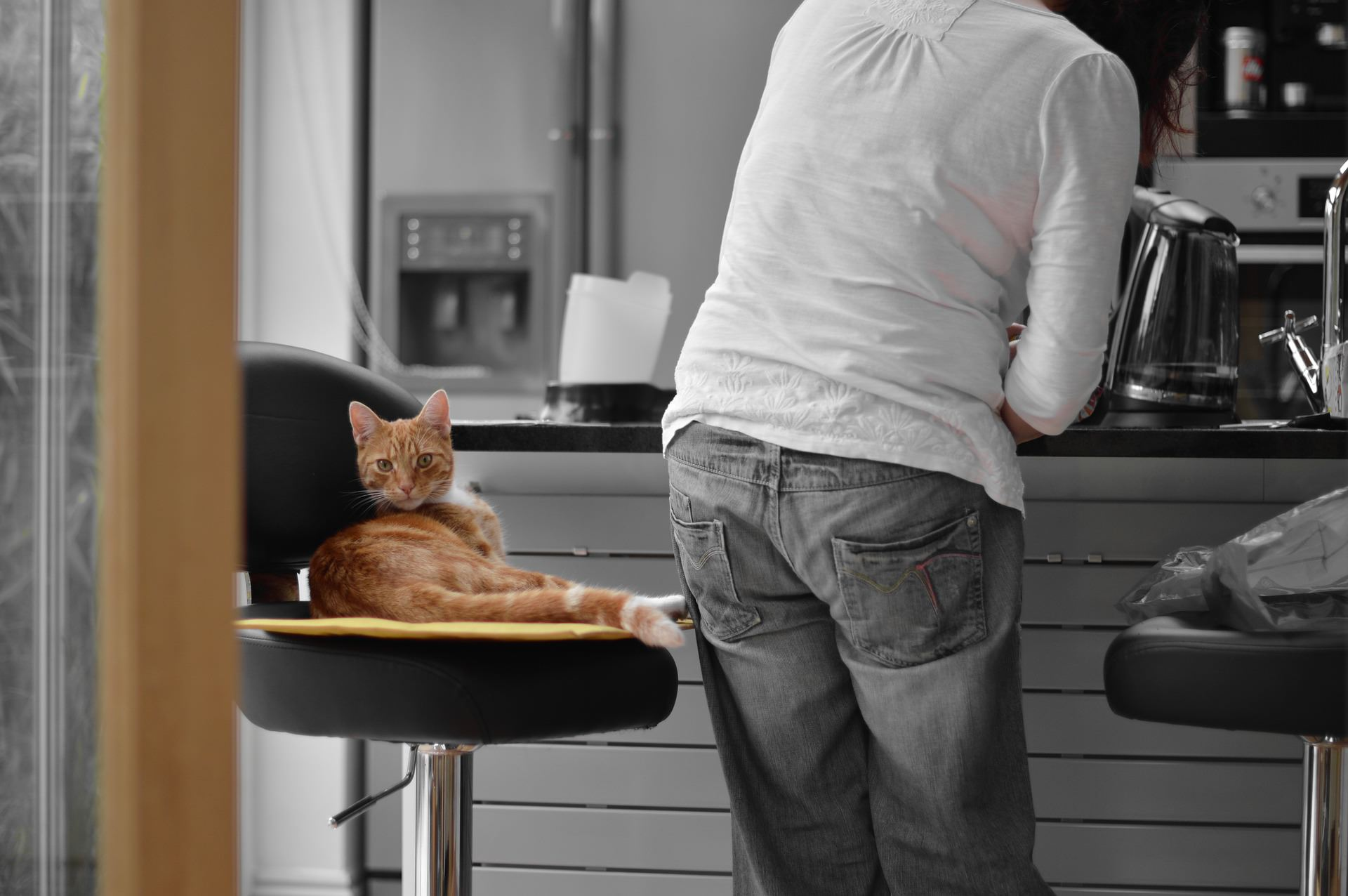 Cómo decorar tu cocina como si se tratase de un bar