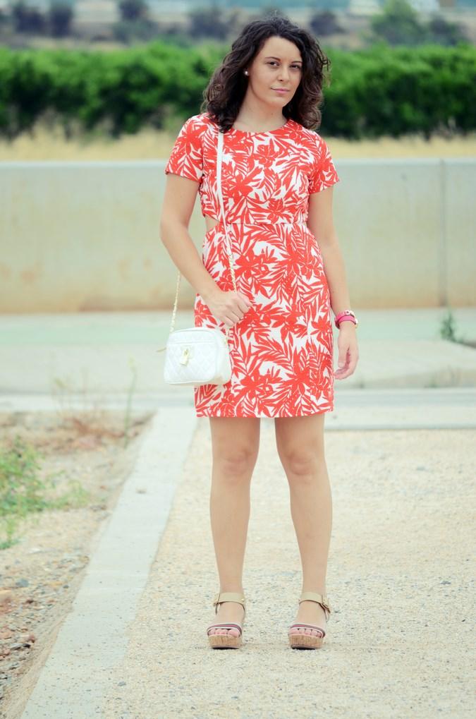 Mi vestido azul - Red Leaves (3)