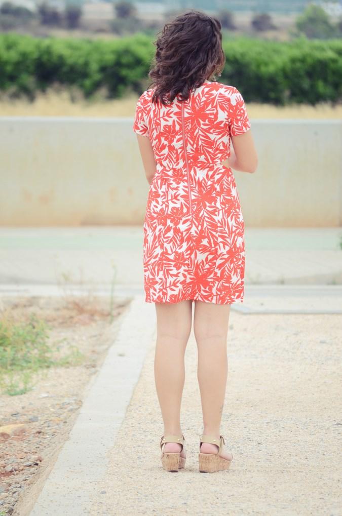 Mi vestido azul - Red Leaves (6)